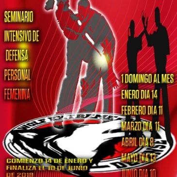 Taller Defensa Personal Femenina – Domingos al Wolf