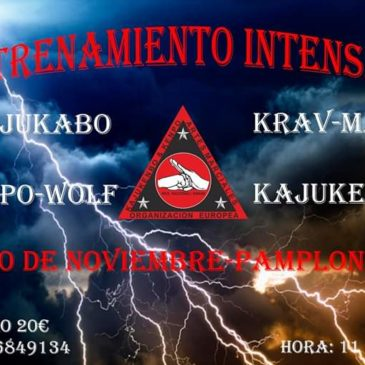 Artes marciales - entrenamiento intensivo en Pamplona