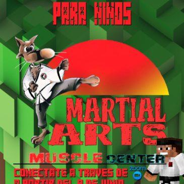 artes marciales online